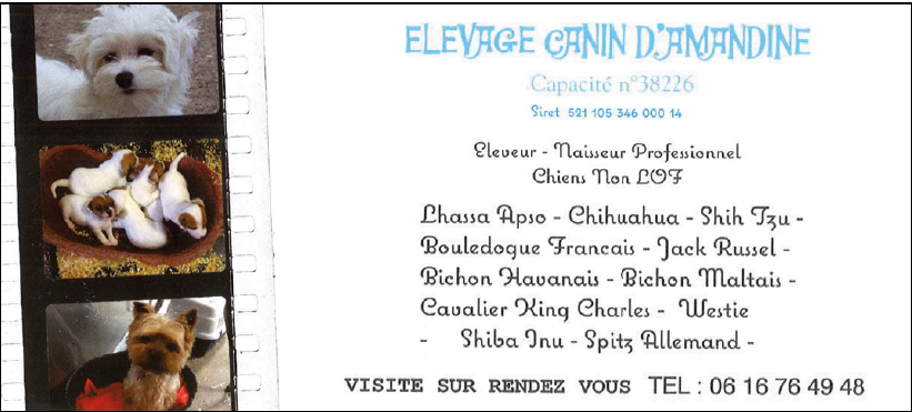 Elevage Canin d'Amandine
